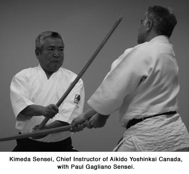 Aikido Shindokan Blog - Kimeda and Gagliano